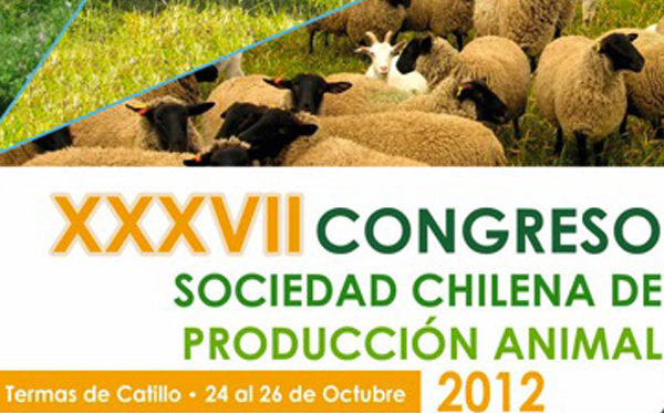 Congreso-Catillo-2012