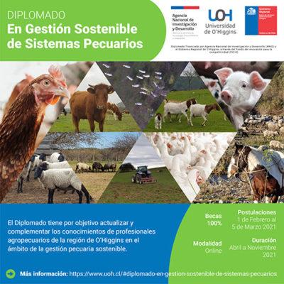 Diplomado en gestion sostenible de sistemas pecuarios Universidad de OHiggins